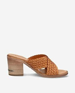 Brown-heeled-slipper